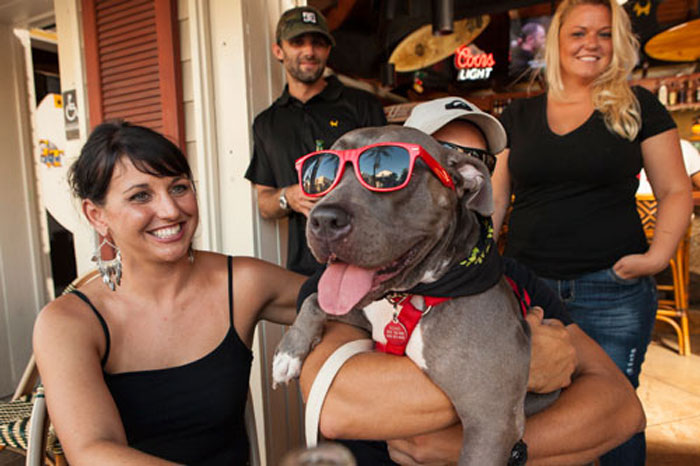 Image of Pet-Friendly Exterior at Island Dogs Bar